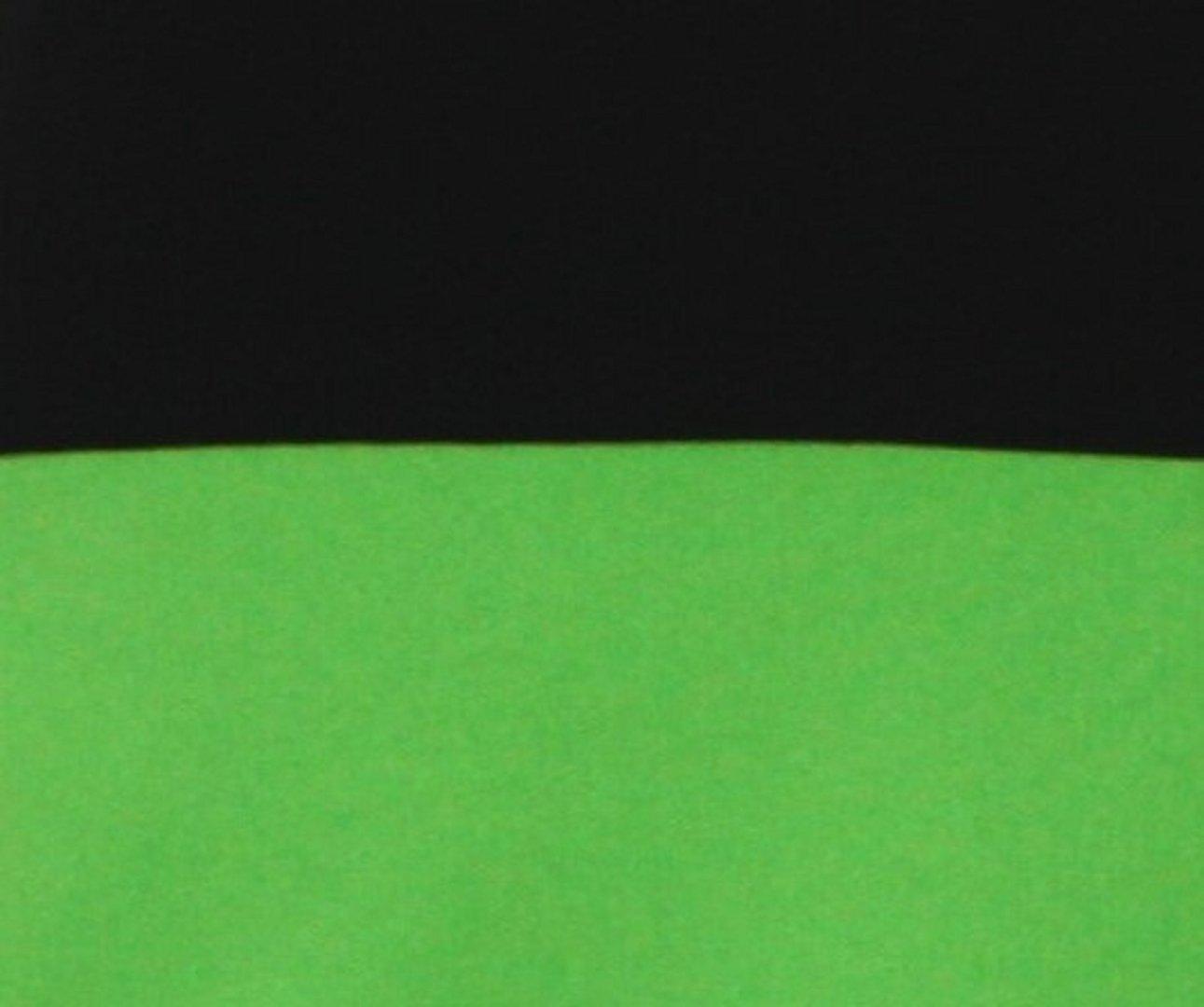 c48fae2387f7 Minirock Hellgrün Grün